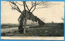 CPA: Camouflage français route de Ham à Chauny / Guerre 14-18 / 1917