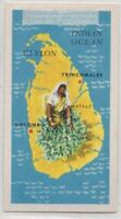 Island Of Ceylon Pearl Of East British Colony Sri Lanka Vintage Ad Trade Card