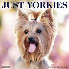 Just Yorkies (dog breed calendar) 2021 Wall Calendar (Free Shipping)