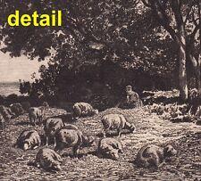 original 1885 James D Smillie ETCHING after Charles Jacque: Landscape and Sheep