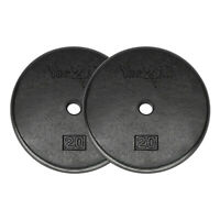Yes4All Standard 1-inch Cast Iron Weight Plates 20 lbs Pair