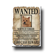 Norwich Terrier Wanted Poster Fridge Magnet New Dog