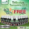 12 xTRIBULUS TESTO ANABOLIC STRONGEST LEGAL TESTOSTERON MUSCLE BOOSTER TRIBULUS