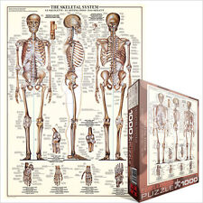 JIGSAW PUZZLE EG60003970 	 Eurographics Puzzle 1000 Pc - The Skeletal System