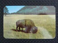 BISON WISENT BUFFALO alte Ansichtskarte / old picture postcard c2335