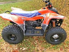 CHILDRENS SMC HORNET 100 AUTO INTERMEDIATE LEVEL KIDS QUADBIKE 10 YR OLD & UP!