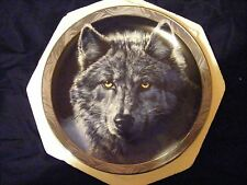 "Brandford Exchange Decorative Porclain Plate Limited Edition of ""Moon Shadows"""