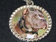 "Dog Pit Bull Grey Charm Tibetan Silver with 18"" Necklace BIN B"
