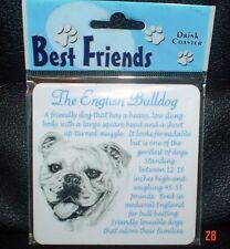 Lovely Bulldog Coaster