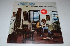 Andrew Gold~What's Wrong With This Picture?~1976 Asylum~SEALED~FAST SHIPPING