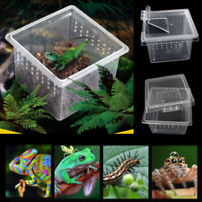 Reptile Transport Gecko Lizard Spider Insects Feeding Cage Insect Breeding Box