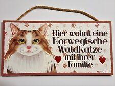 Holz Schild Katze Norweger Waldkatze Türschild Dekohänger Tierschild Geschenk