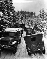 New 8x10 World War II Photo: Military Vehicles in Woods of Wallerode, Belgium