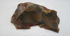 RAW NATURAL Geode Agate Crystal Specimen Rockhound Collectible Metaphysical