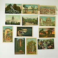 Lot 12 California Postcards Vintage Camp Curry Tournament of Roses Hotel Senate