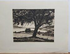 """Hans De Vos (1891-1949) Etching """"On The Eglisbohl"""" 12""""×16"""" Wien"""