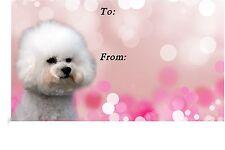 Bichon Frise Dog Self Adhesive Gift Labels design No. 2. by Starprint