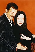 The Addams Family 24X36 Color Poster Print John Astin Carolyn Jones