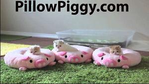 PillowPiggy.com Premium domain  - GoDaddy Pillow Piggy Cute URL