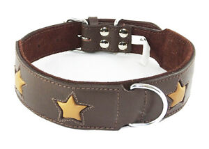 Brown Staffie Dog Collar With Tan Stars Staffy Collar Staffordshire Bull Terrier