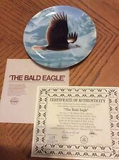 Collector Plate Bald Eagle by Daniel Smith