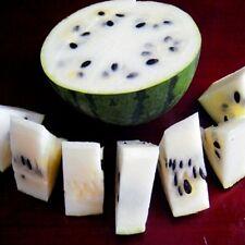 FD807 Rare Sweet Watermelon Seeds Fruit Garden Seed ~White~ 10PCs Free Shipping