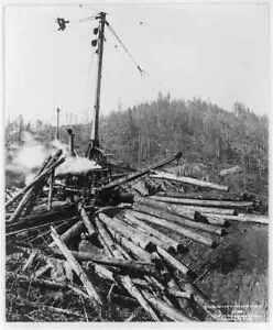 Close-up view of tower skidding logging,c1938,Lumbering,Washington,WA,Timber