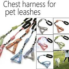 Dog Leash Harness Set Adjustable Durable for Large Medium Small Pet Dog Walk Run