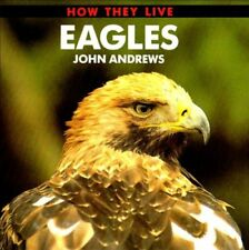 Eagles (How They Live) By John Andrews