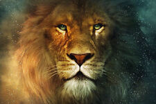 Narnia Lion Canvas Print 20*30 Inch HUGE !