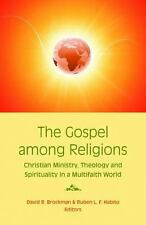 The Gospel among Religions : Christian Ministry, Theology, and Spirituality.