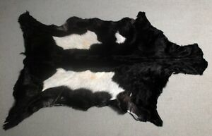 GOAT Western taxidermy Hide Rug Natural Pattern Fur Goat Hide Rode SA-2875