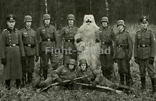 WW2 Picture Photo WW2 German soldiers posing with a bear  1614