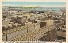 One of the Largest Lumber Yards in the World in Washington Postcard