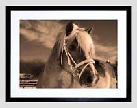 ICELANDIC PONY SEPIA HORSE WINTER SNOW BLACK FRAMED ART PRINT PICTURE B12X9227