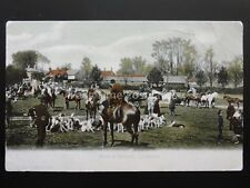 Hampshire NEW FOREST Meet of the Hounds LYNDHURST c1904 by F.G.O. Stuart 596