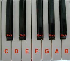 C/F E/B G Black Key Clé synth M1 T2 T3 01W o1W FD PRO Clé Notes White Black KEYS