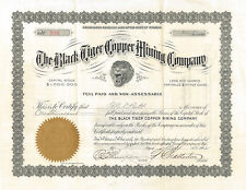 The Black Tiger Copper Mining Company 1902 Wyoming 1,000 share stock certificate