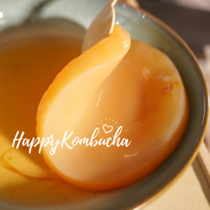 Happykombucha Mother scobies and brewing kits