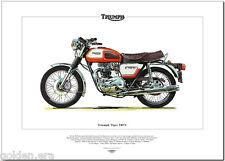 TRIUMPH TIGER TR7V-1973-80 MOTO CLÁSICA Lámina Artística - 750cc MOTO