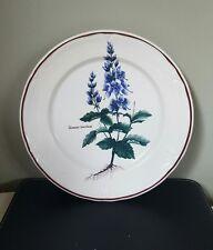 Vintage Villeroy and Boch? Botanical Design Dinner Plate