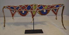 Papua New Guinea Belt Nassa Cowrie Shell Red Blue Abelam Tribe Currency Belt