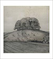 Wood Realism Art Prints
