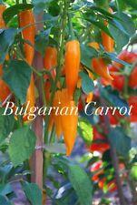 HOT CHILLI PEPPER - BULGARIAN CARROT - 10 SEEDS