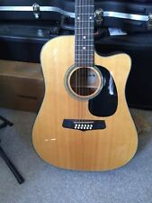 """""""""""Electro Acoustic Guitar Aria"""""""" 12 strings in a new HARD CASE"""