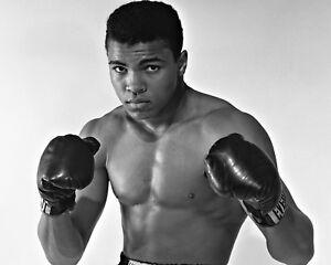 New 11x14 Photo: American Champion Boxer Muhammad Ali (AKA Cassius Clay)
