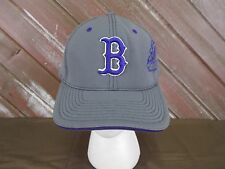 Boston Bulldogs Hockey Hat Fitted Cap Lid Gray Purple Size L/XL 7 3/8-8