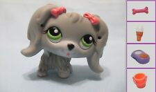 Littlest Pet Shop Dog Maltese Cocker Spaniel 193 and Free Accessory Authentic