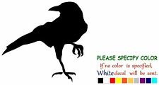 "CROW RAVEN BLACKBIRD Funny Vinyl Decal Sticker Car Window laptop tablet truck 6"""