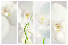 STUNNING WHITE ORCHID FLORAL CANVAS COLLAGE #15 QUALITY FRAMED BOX CANVAS A1